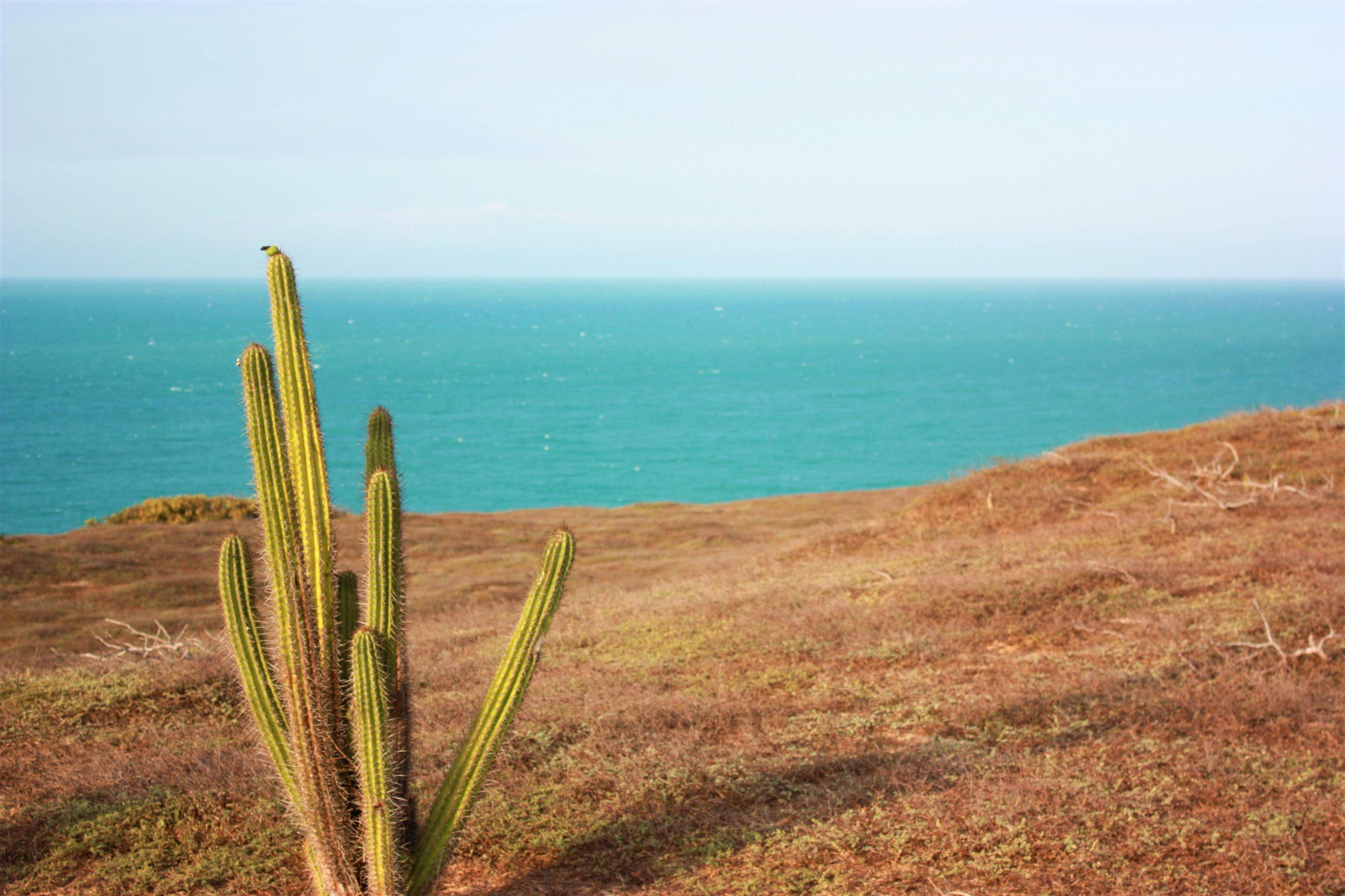 Martwienie się, narzekanie - blog spokój ducha