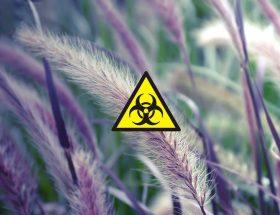 martwienie się w obliczu pandemii
